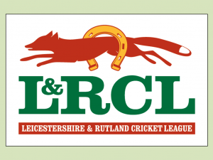 Cricket matches - League has delayed for 2 weeks