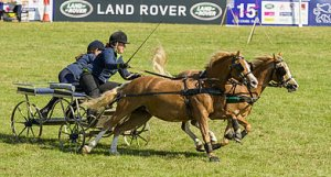 Great Rempstone Steam & Country Show
